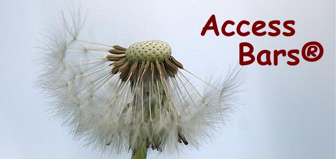 Access Bars Tagesausbildung